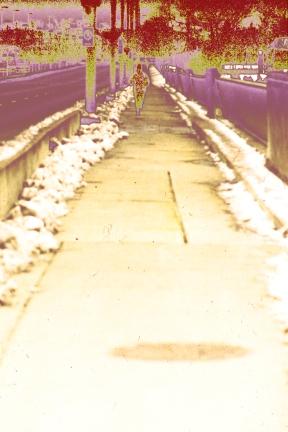 038-15_1981-11-11-M